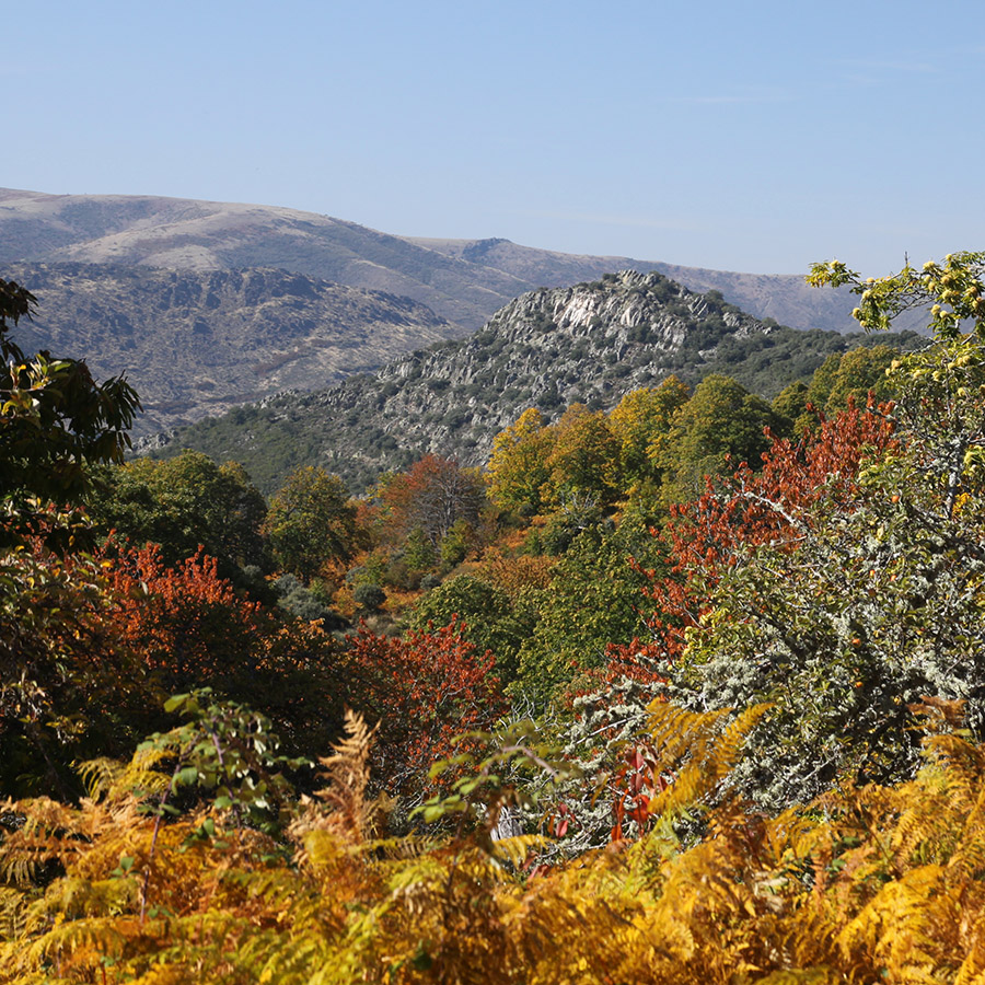 El Hueco en otoño con Castil de Cabras y el valle del río Quilamas al fondo